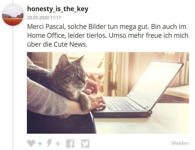 Kommentar bei den Cute News auf watson.ch