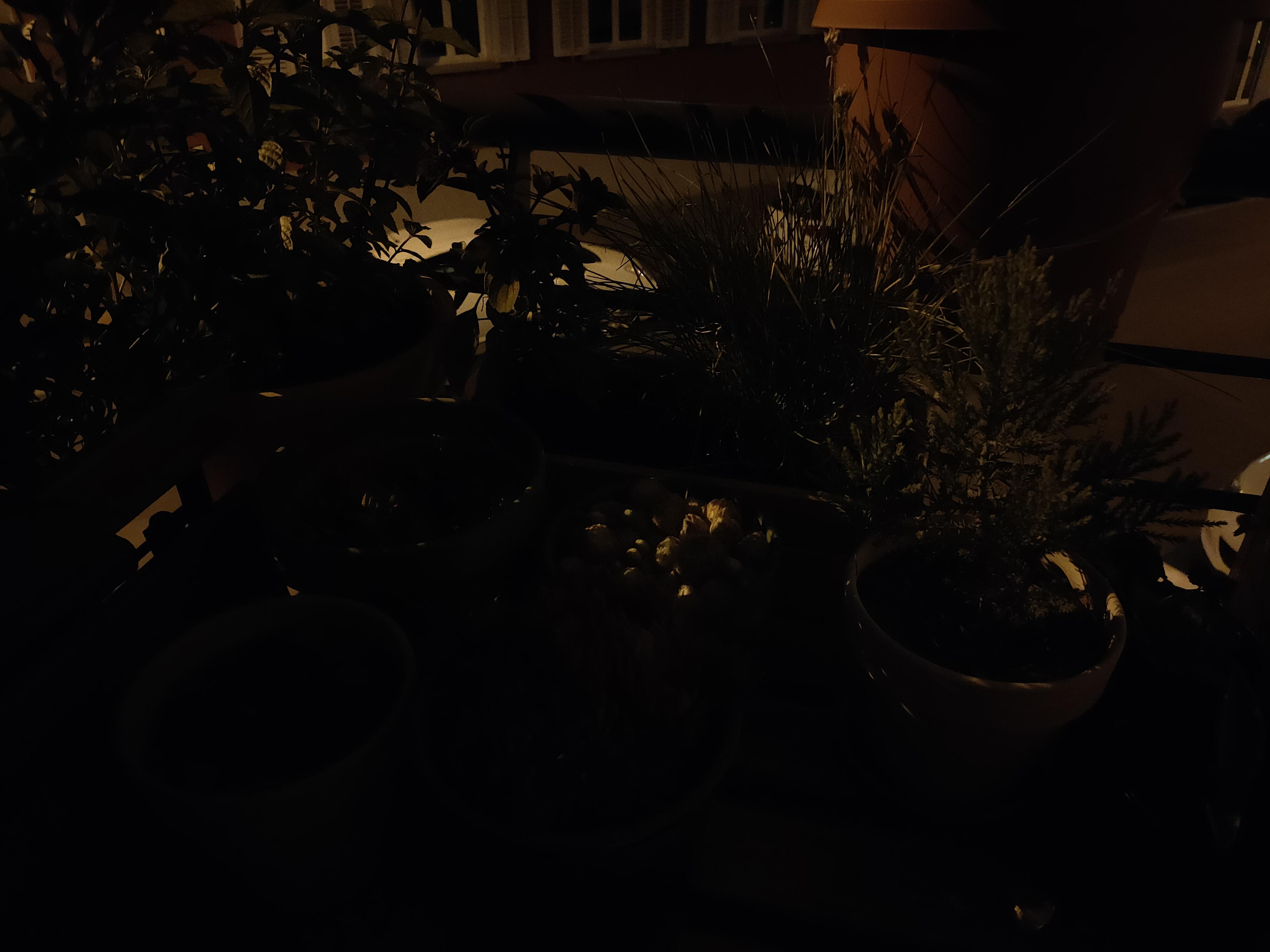 Oppo Find X2 Neo Nachtaufnahme