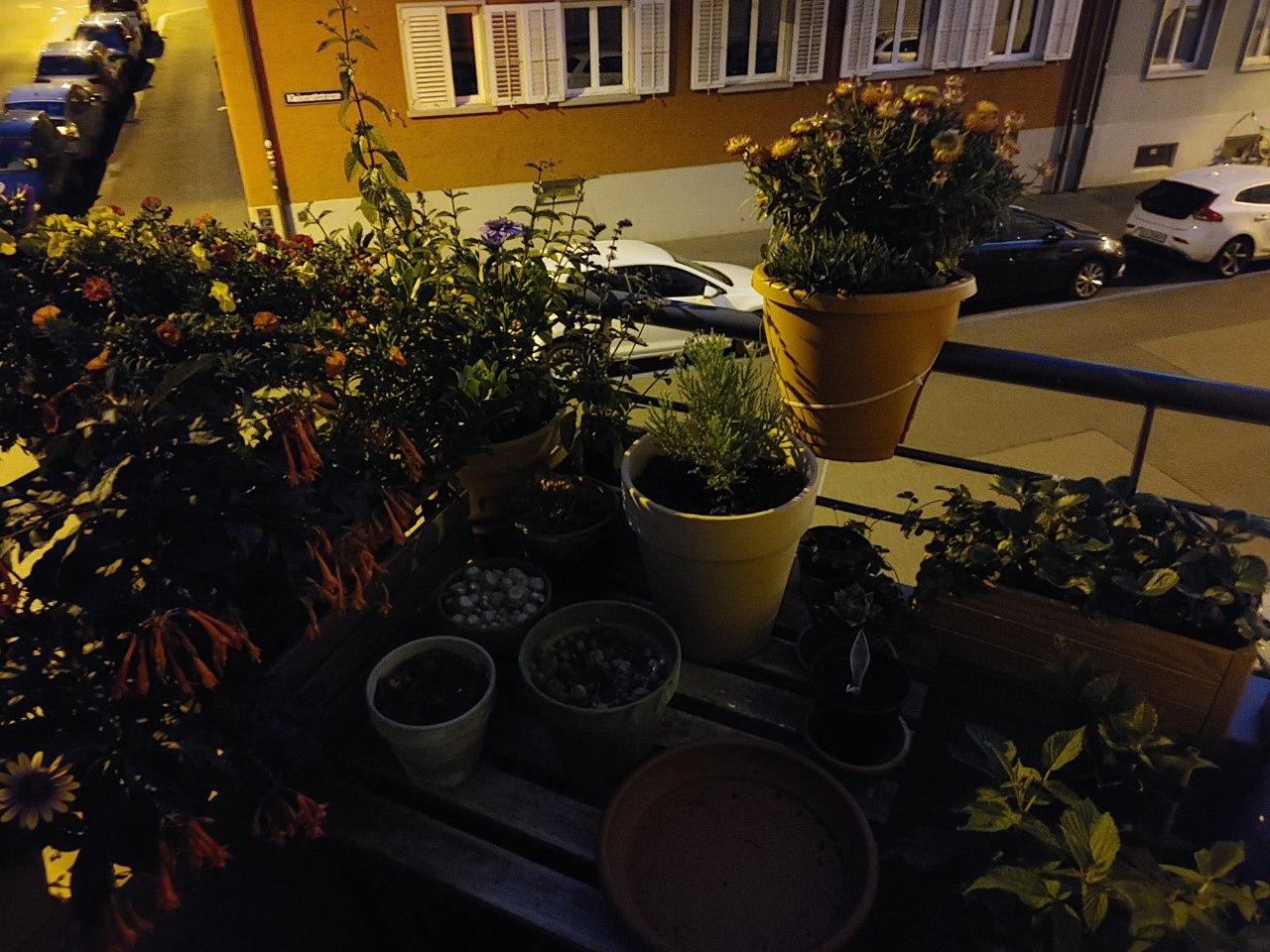 LG Vevlet Nachtaufnahme mit Nachtmodus